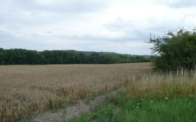 č. 1032:Prodej pozemku – 22 368 m2 – Lahošť, okr. TepliceCena: 6 710 400 Kč