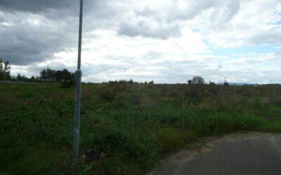 č. 942:Pozemek – 3904 m2, Žalany